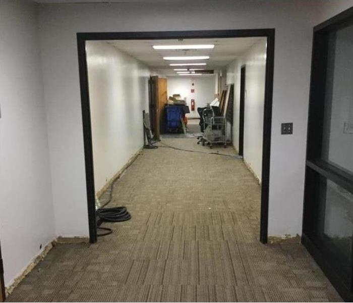 Water Loss in Hallway After