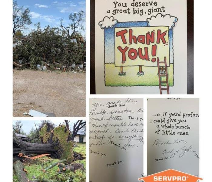 Overturned trees and debris litter the sidewalk. A customer sends a thank you note