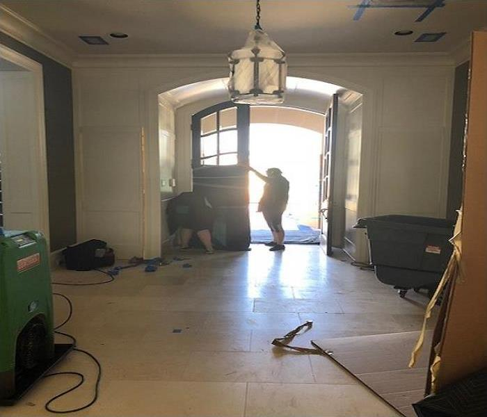 Mold Remediation Mold in Midland, TX
