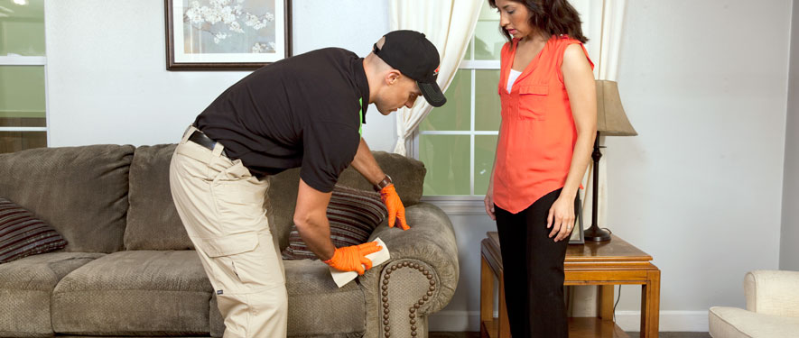 Lake Arlington, TX carpet upholstery cleaning
