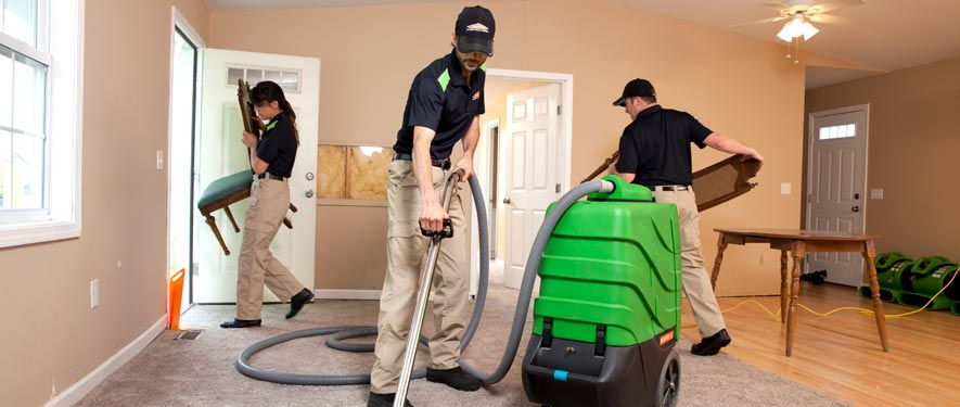 Lake Arlington, TX cleaning services